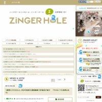 ZiNGER-HOLE